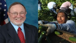 """Don Young, Congressman from Alaska, referred to workers as """"wetbacks"""""""