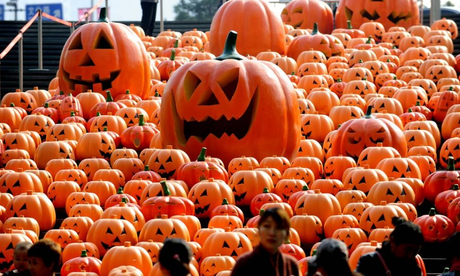 pumpkins in china